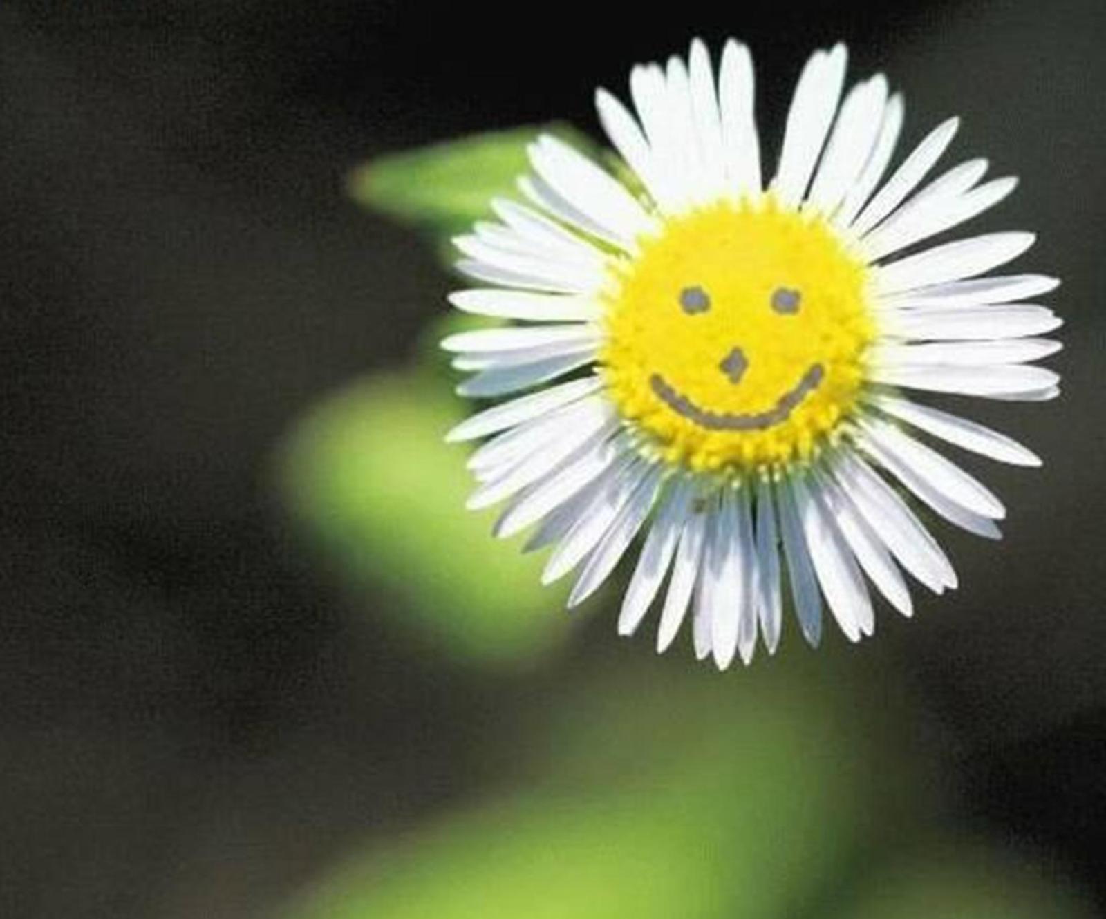 L'Onu ci esorta: oggi sorridiamo, almeno per un giorno si può