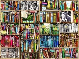 colin-thompson-bookshelf
