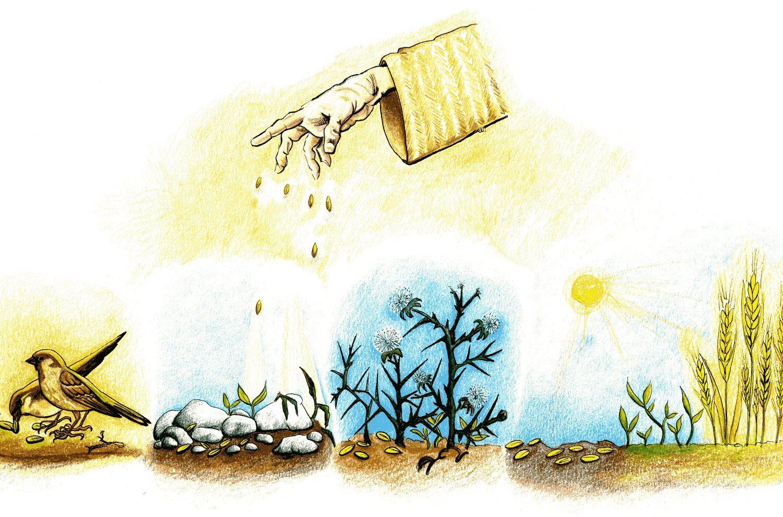 I miracolosi semi del Regno di Dio